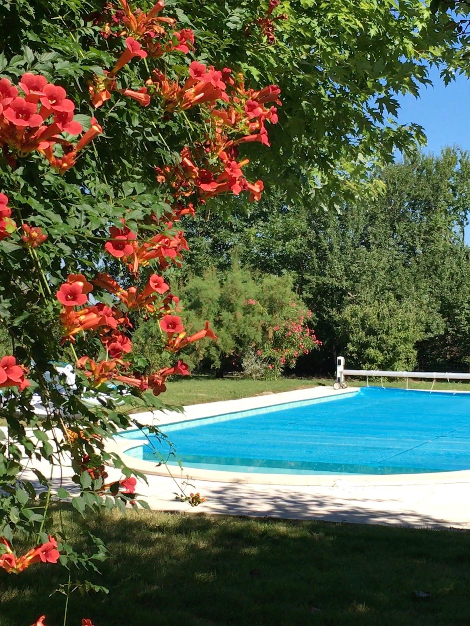 Swimming 2 | Domaine du Pignoulet, Gascony, France