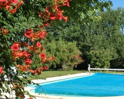 Swimming Pool   Domaine du Pignoulet, Gascony, France